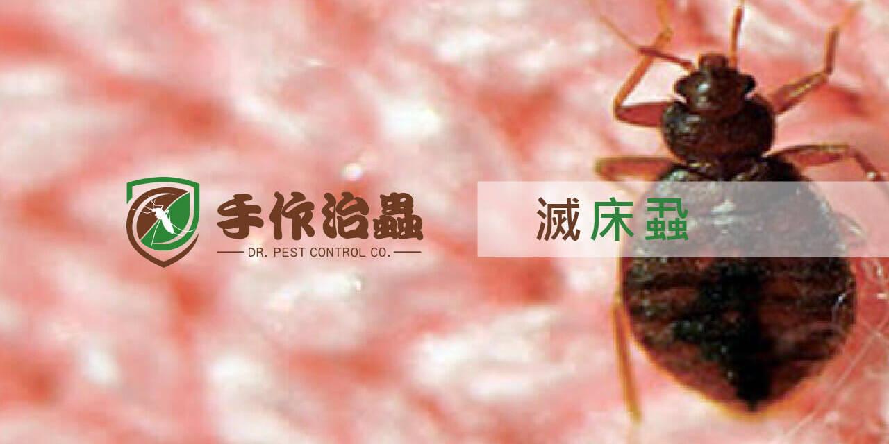 滅床蝨, 除蟲劑, 手作治蟲滅床蝨公司
